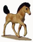 Horse - Pony Colt On Base